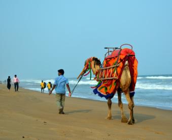 Puri Beach FOR WS